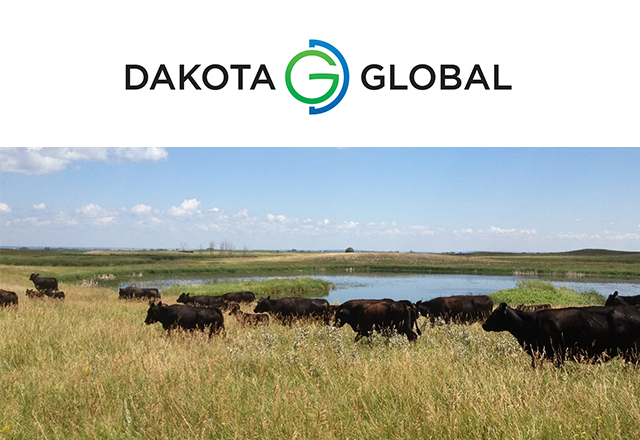 Dakota Global Logo